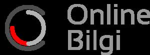 Online Bilgi Şirket Logomız